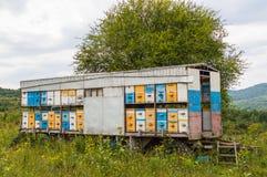 Remolque móvil del colmenar en prado Vista de la naturaleza de la república de Adygea, Rusia Imagenes de archivo