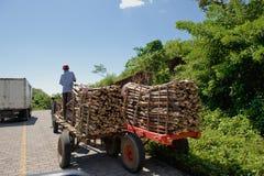 remorque chargée de bois de charpente Images stock