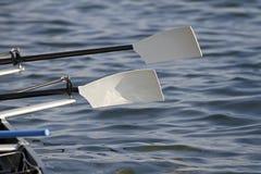 Remos del rowing imagen de archivo