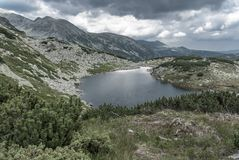 and remote alpine mountain lake. Surrounded by alpine vegetation in Retezat Romania Royalty Free Stock Photo