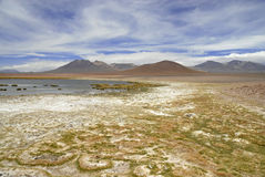 Remote, Barren volcanic landscape of the Atacama Desert, Chile Stock Images