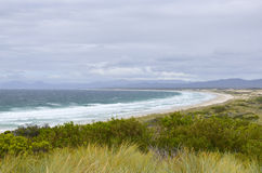 Tasmania beach at Bay of Fires. Remote beach with sand dunes along popular tourist destination stretched Bay of Fires on Australian island Tasmania, with hills Stock Photos