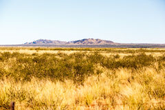 Remote Bushland. A remote are in the northern cape in South Africa, typical bush and hard rock hills are common in this area. This area is very remote and lots Royalty Free Stock Photo