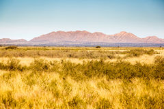 Remote Bushland. A remote are in the northern cape in South Africa, typical bush and hard rock hills are common in this area. This area is very remote and lots stock photography