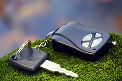 Remote car key. On alga stone Royalty Free Stock Photos