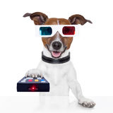 Remote control 3d glasses tv movie dog. Watching Stock Photos