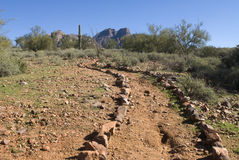 Remote desert trail Royalty Free Stock Image
