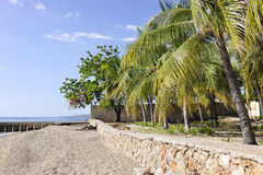 Remote Haitian Beach Stock Photography