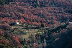 Remote house in the forests of Provence, France. Shot in a quiet afternoon just about when sun was about to set Royalty Free Stock Photo