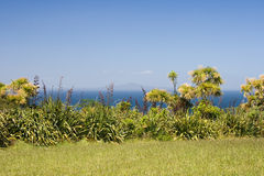Remote island. View on Rangitoto Island across the sea. Auckland, New Zealand royalty free stock photography