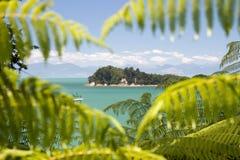 Remote island through window of trees Stock Photo