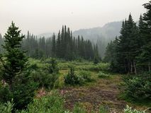Remote and isolated campground beside hidden lake deep and high in the Canadian rockies. stock image