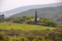 Remote landscape on greek island samos Stock Photo