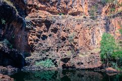 A remote lily pond lagoon close to Katherine Gorge in Nitmiluk National Park, Australia Royalty Free Stock Images
