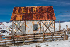 Remote metal barn surrounded by junk cars in snowy area of central Colorado Royalty Free Stock Images