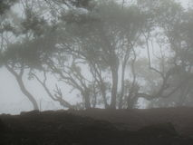 Remote mountain covered in mist Stock Photos