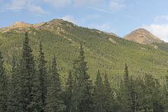 Remote Peaks in the Wilds Royalty Free Stock Photography