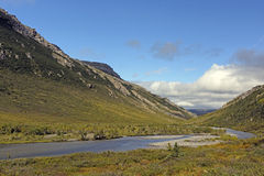 Remote River in the Alaskan Wilds Royalty Free Stock Photo