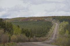 Remote Road Alaska Highway Canada Stock Photo