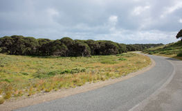 Remote Roadway at Rottnest Island Royalty Free Stock Photography