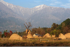 Remote rural Agriculture in Remote Himalayas India Stock Photos