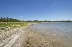 Remote Shore on a Wilderness Lake Royalty Free Stock Photography