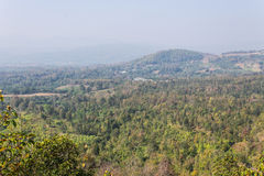 Remote village In maetang Chiangmai Royalty Free Stock Photo