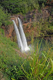 Remote waterfall in rainforest in Hawaii Stock Images