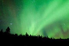 Remous boréal de substorm d'aurora borealis de taiga de forêt Photographie stock