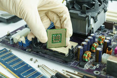 Remova o processador central da placa de circuito principal à verificação Fotos de Stock Royalty Free