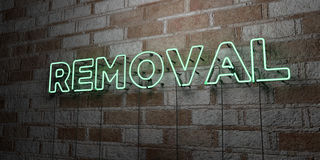 REMOVAL - Glowing Neon Sign on stonework wall - 3D rendered royalty free stock illustration Royalty Free Stock Images