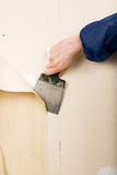 Removal of old wallpapers Stock Photography