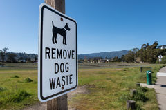 Remove Dog Waste sign on wooden post Stock Image
