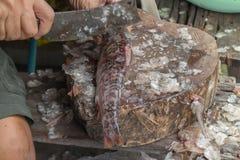 Removendo as escalas de peixes usando a faca de peixes Imagem de Stock