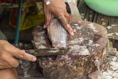 Removendo a faca de peixes das escalas de peixes Imagens de Stock