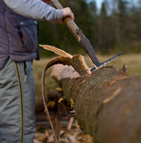 Removing bark from logs Royalty Free Stock Photography