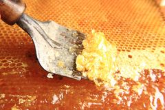Removing bee wax from  fresh honey Stock Images