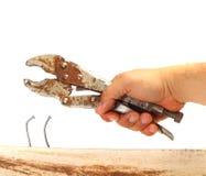 Removing Bent Nail Stock Image