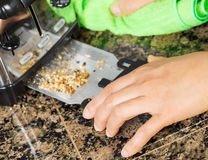 Removing bread crumbs from Kitchen Tray Toaster Royalty Free Stock Photos
