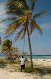 Removing coconuts from a tree, Bahamas. On a beach on Grand Bahama Island, a local man removes coconutsusing a long pole. White sand beach and tropical sea in Stock Image