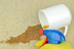 Removing a coffee stain from a carpet Royalty Free Stock Images