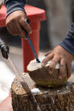 Removing the meaty part of a coconut in mexico Stock Images
