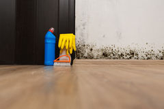 Removing mold allergen. In a wet room royalty free stock images