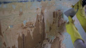 Removing old wallpaper. From the wall using a stripping tool stock footage