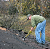 Removing shingles Stock Images