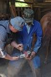 Remplacement en fer à cheval Photographie stock libre de droits