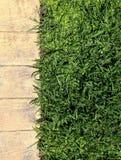 remsa av gräs och trottoar Arkivbild