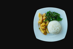 Remuez Fried Chicken et les feuilles brésiliennes avec du riz cuit Photographie stock