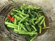Remuez Fried Swamp Cabbage avec le boong sal? de Bean Pad Pak du soja photos libres de droits