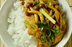 Remuez le champignon frit de shimeji avec l'écrimage de poulet sur le riz images libres de droits